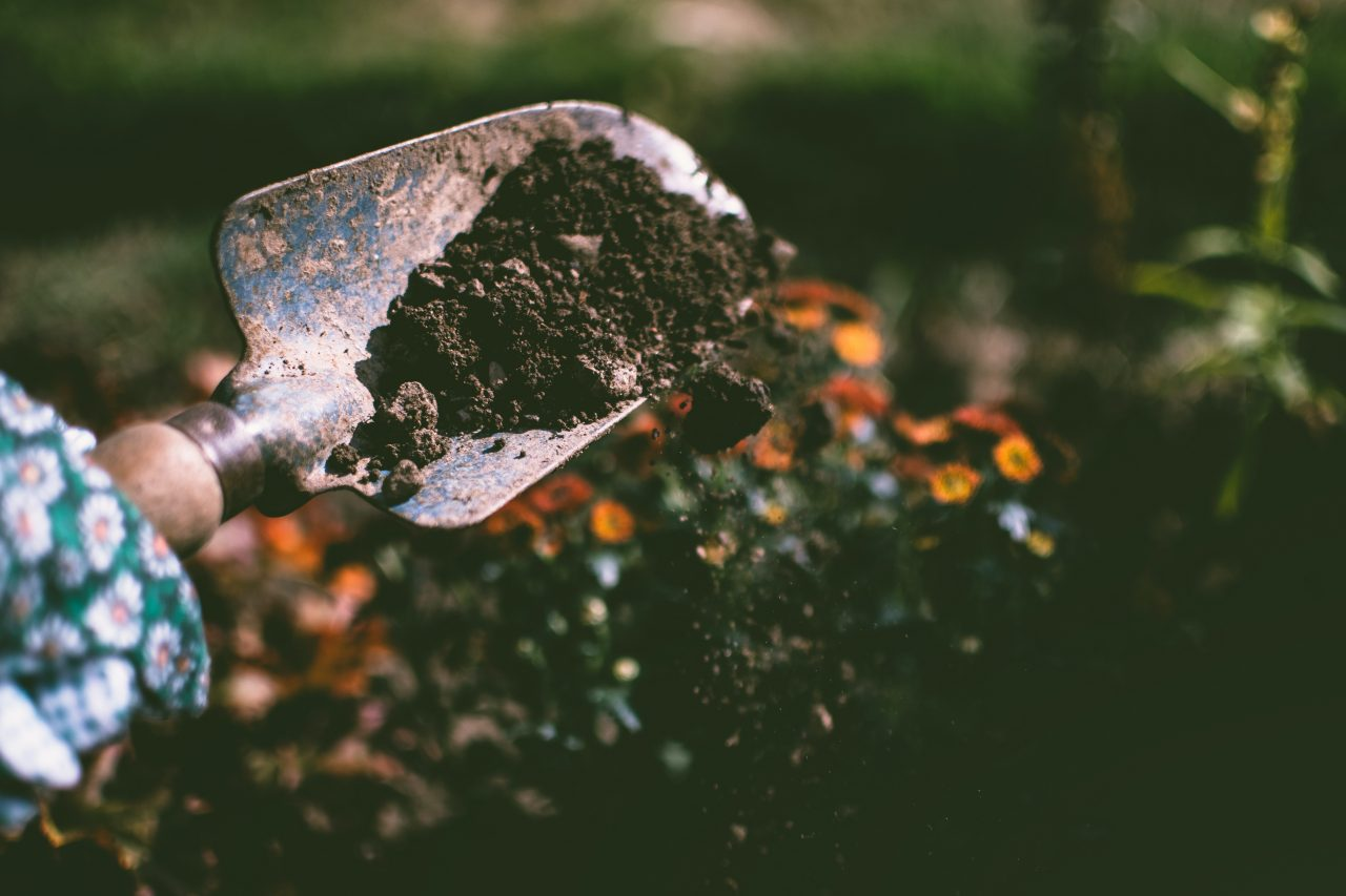person-digging-on-soil-using-garden-shovel-1301856-1280x853.jpg